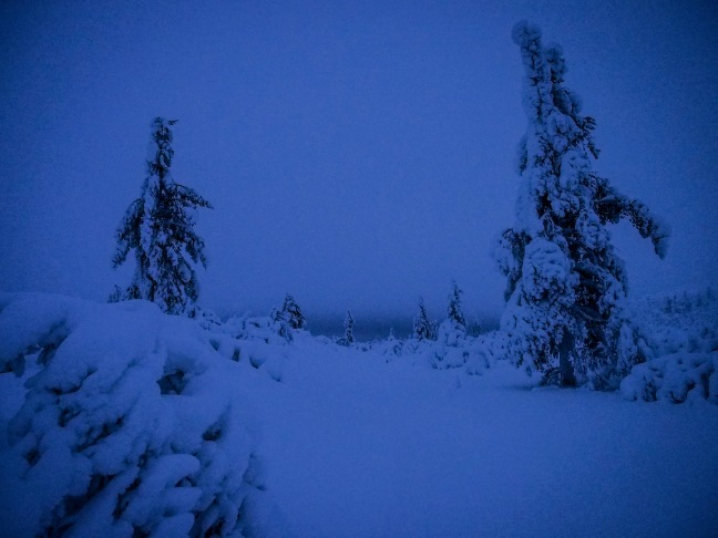 Blue moment in Finnish Lapland in January
