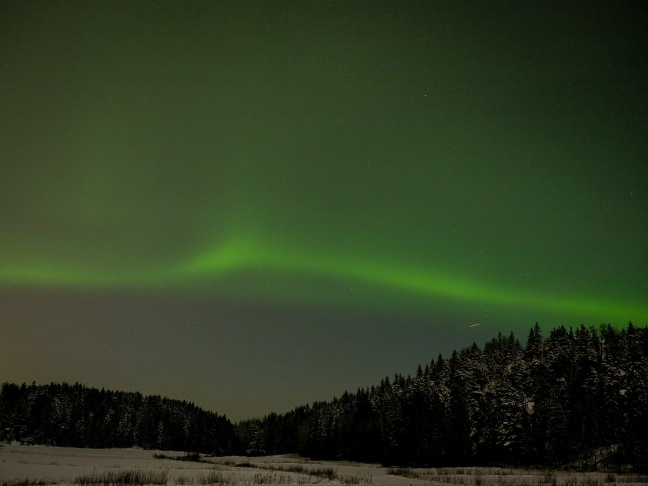 Northern Lights above Sipoonkorpi National Park