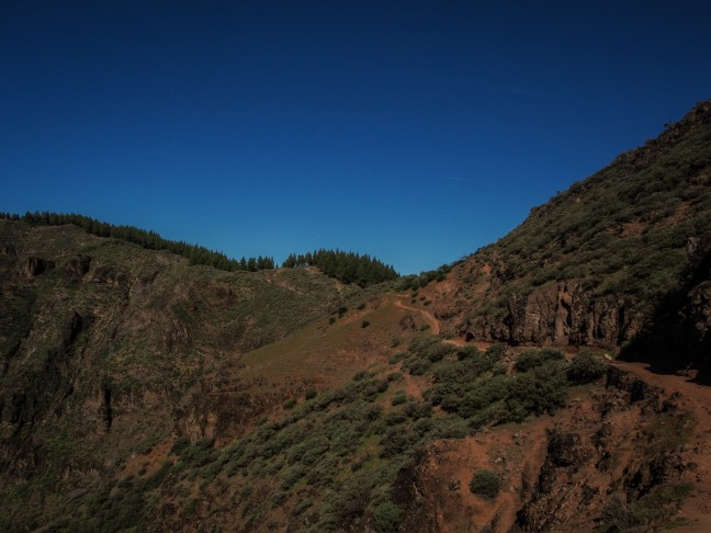 Hiking in Gran Canaria