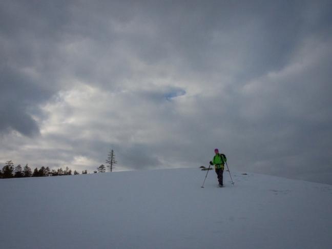 Snowshoeing at Hirviäkuru