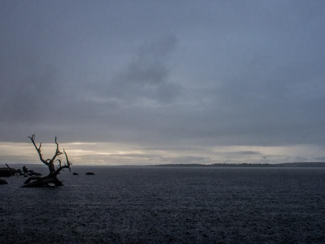 Rain at Lake Inari