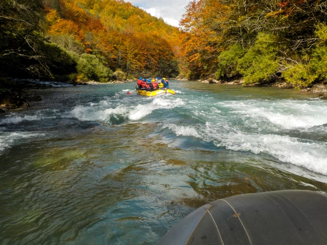 Whitewater rafting on the Tara River